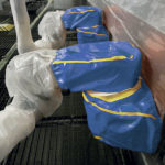 housse protection robot cover lavable torcal automobile ASP eulmont